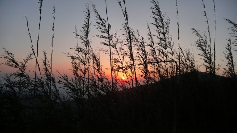 Tiger Hill, Sunset