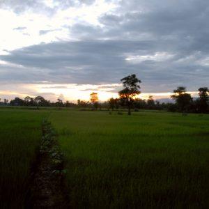 Terai Plains, Chitwan