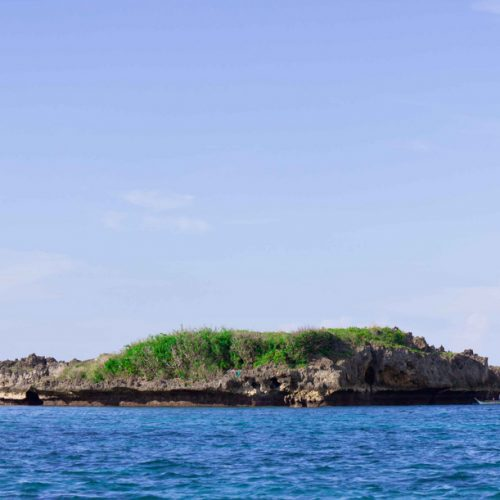 Crocodile Island, Boracay