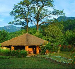 Vanghat Woods, Cottage